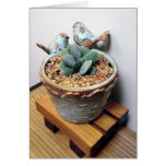 Feathered Friends Notecard - The Perfect Plant Cards