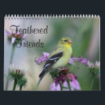 """Feathered Friends - Wild Birds Calendar<br><div class=""""desc"""">Some of the beautiful wild birds that are with us year round in New England. All photos were taken in Massachusetts. The birds pictured are in order of months: Tufted titmouse, female Cardinal, American Robin, Song Sparrow, Gray Catbird, male Cardinal, American Goldfinch female, Downy Woodpecker, House Sparrow, Black-capped chickadee, White-breasted...</div>"""