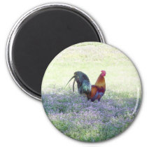 Feathered Pride Magnet