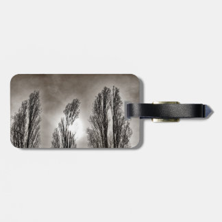Feathered Trio Luggage Tag