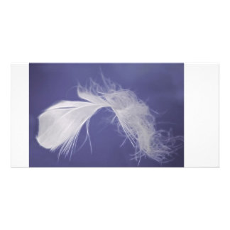Feathers are symbols of spirituality photo greeting card
