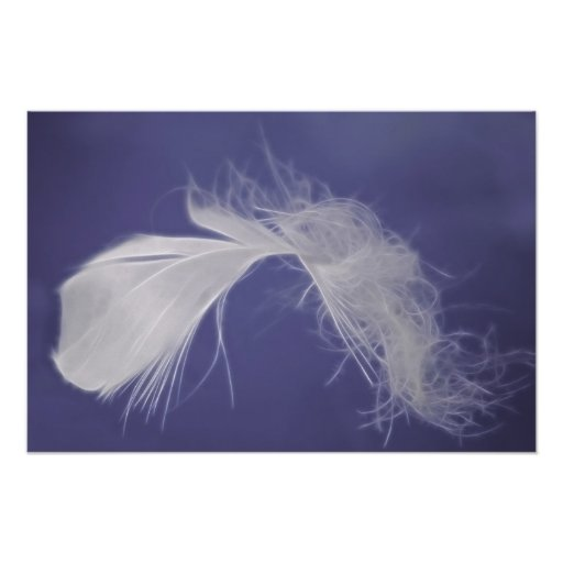 Feathers are symbols of spirituality poster