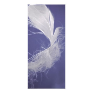 Feathers are symbols of spirituality rack card
