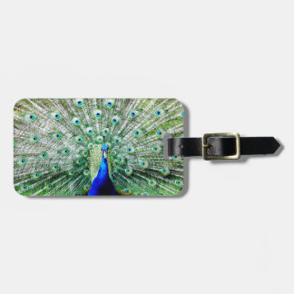 Feathers Bag Tag