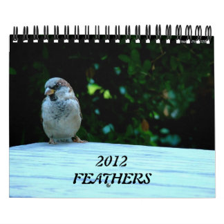 FEATHERS Bird Photography Wall Calendar