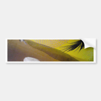 feathers bumper sticker
