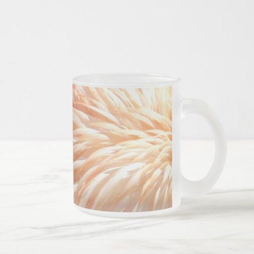 Feathers_ del flamenco taza de cristal