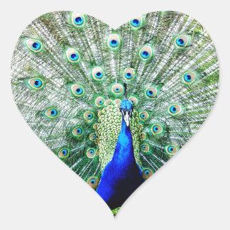 Feathers Heart Sticker