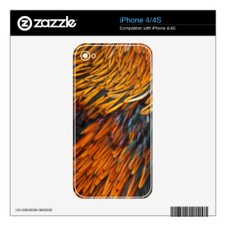 Feathers iPhone 4/4S skin Decal For iPhone 4S