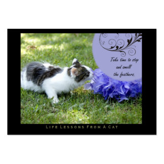 Feathers Life Lessons From A Cat ACEO Art Cards Business Cards