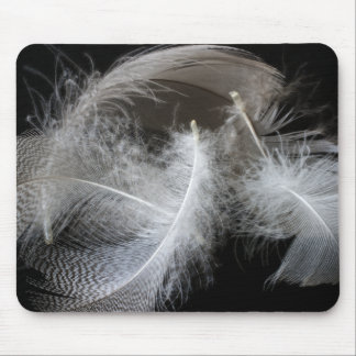 Feathers Mouse Pad