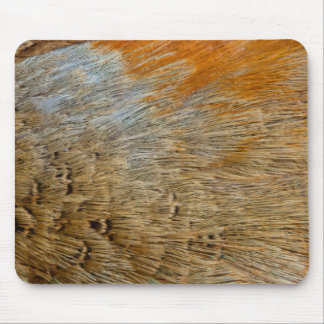 Feathers Of A Ring-Necked Pheasant Mouse Pad