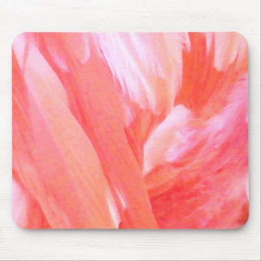 Feathers of Flamingo_ Mouse Pad