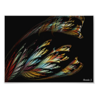 Feathers Of Many Colors Print