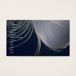 Feathers Profile Card