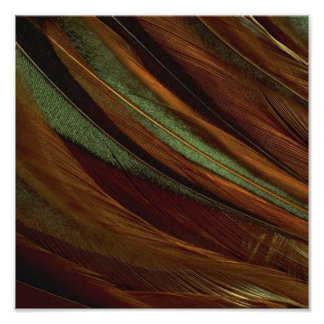 FEATHERS SWIRL POSTER