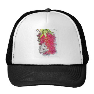 Feathertail Glider Products Trucker Hat