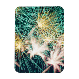 Feathery Fireworks Rectangular Photo Magnet