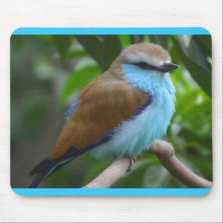 FEATHERY LITTLE BIRD BLUE BROWN WHITE BLACK ADORAB MOUSEPAD