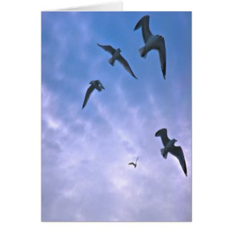 featheryfriends Vertical Greeting Card