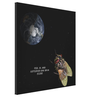 Feb. 15, 2013 Asteroid 2012 DA14 Flyby Canvas Print