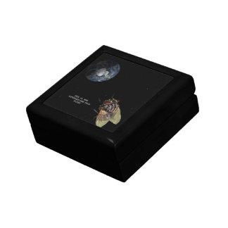 Feb. 15, 2013 Asteroid 2012 DA14 Flyby Jewelry Box