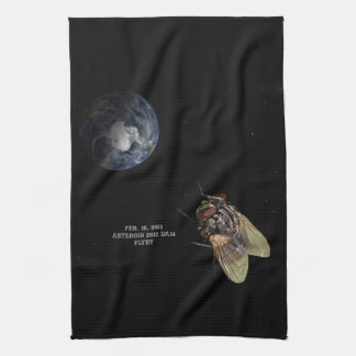 Feb. 15, 2013 Asteroid 2012 DA14 Flyby Towel