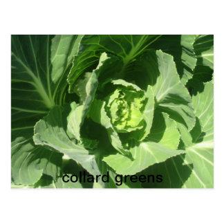 feb 28 193, collard greens postcard