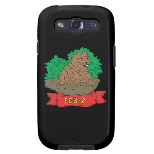February 2nd samsung galaxy s3 cover
