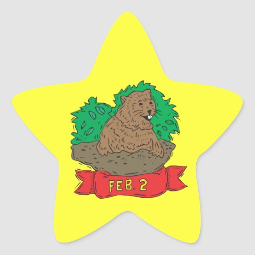 February 2nd star sticker