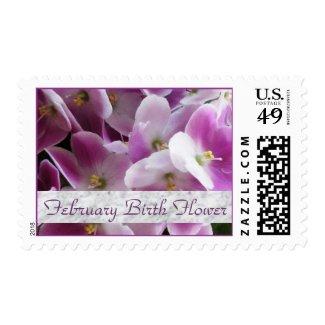 February Birthday Stamps - Violet Postage