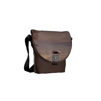 February Morning #1 Messenger Bag