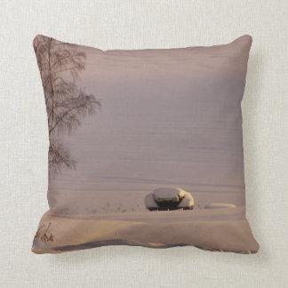February Morning #1 Pillows