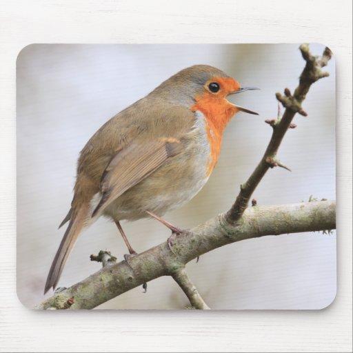February Robin Mousepad