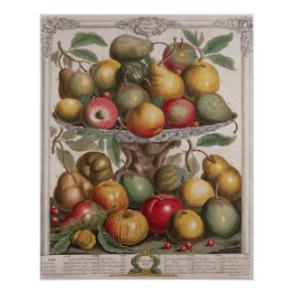 February, 'Twelve Months of Fruits' Poster