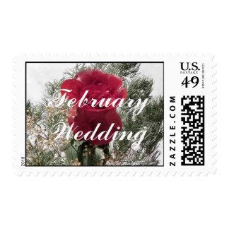February wedding postage stamps
