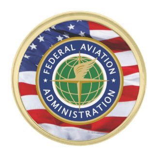 Federal Aviation Agency Great Seal Lapel Pin