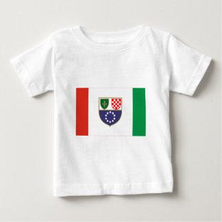 Federation of Bosnia & Herzegovina Flag Baby T-Shirt