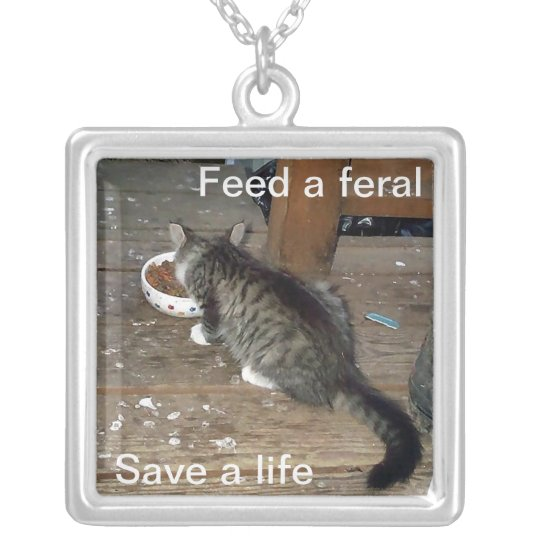 """""""Feed a feral, save a life"""" Feral Cat Necklace"""