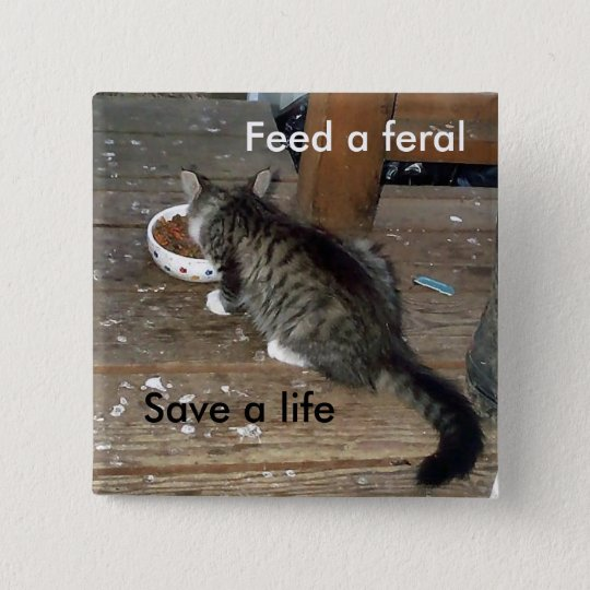 """Feed a Feral, Save a Life"" feral kitten button"
