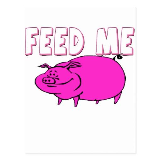 FEED ME PIG POSTCARD