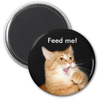 Feed the cat magnet