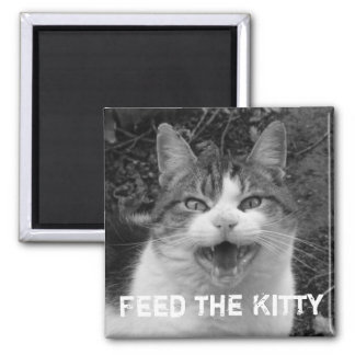Feed the Kitty Crabby Cat Magnet Refrigerator Magnets