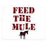 Feed The Mule Johan Franzen Postcard