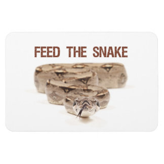 Feed the Snake Magnet