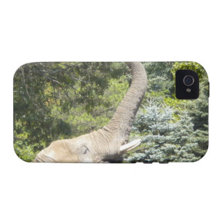 Feeding Elephant iPhone 4 case