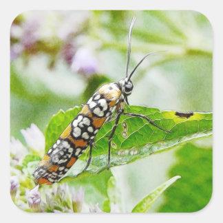 Feeding – Ermine Moth on Agastache Square Sticker