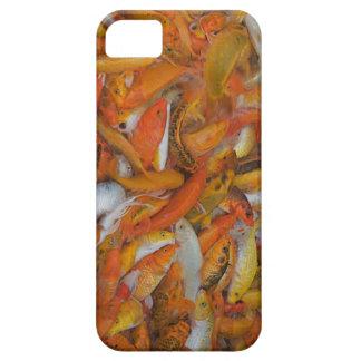 Feeding frenzy iPhone SE/5/5s case