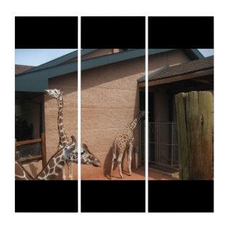 Feeding Giraffe Zoo Personalize Destiny Destiny'S Triptych