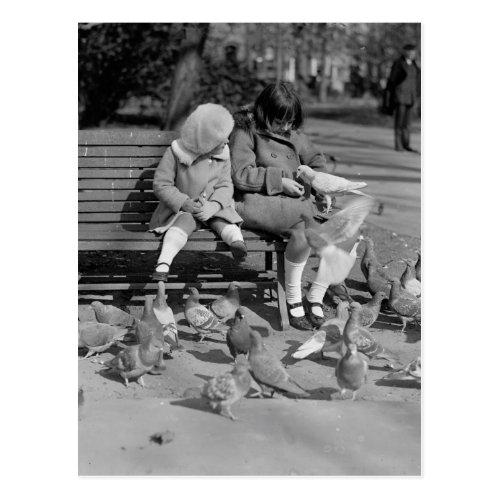 Feeding Pigeons On A Bench Postcard